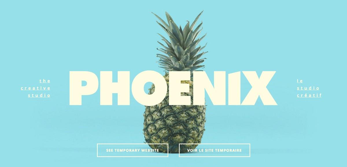 Phoenix The Creative Studio