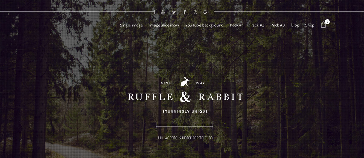 Rabbit - Coming Soon WordPress Theme