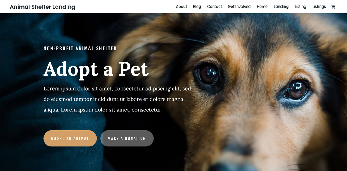 Animal Shelter WordPress Theme